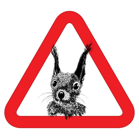 presence: Animal free, sign warning squirrel zone vector