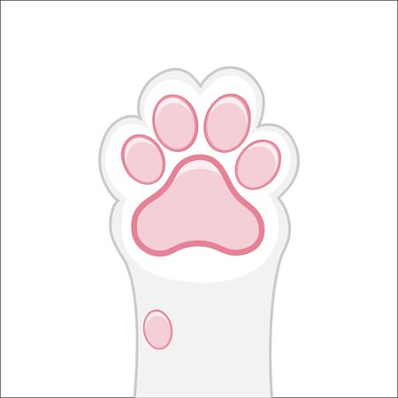 Cat paw background, kitten flat design, prints, cartoon, cute cat foot wallpaper vector illustration