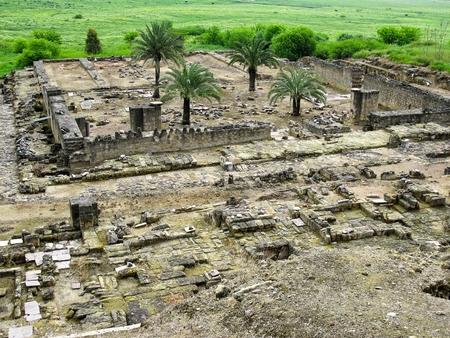 caliphate: Ruins of old mosque in Medina Azahara. Cordoba.  Spain.
