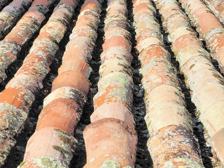 roof: Detail of old roof, Where the Aged and mossy tiles are appreciated. Manzanares el Real Castle. Spain. Stock Photo