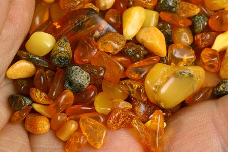 Baltic amber stones on palm 写真素材