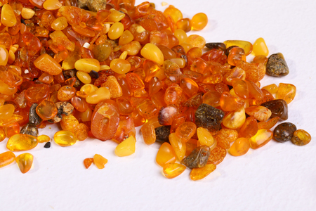 Baltic amber stones on white background
