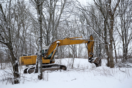 Excavator in the forest