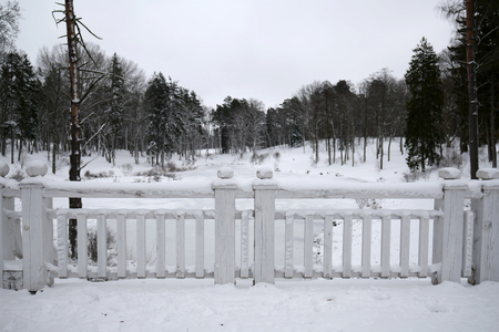Fence covered by snow 写真素材