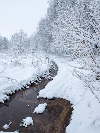 River in winter 写真素材