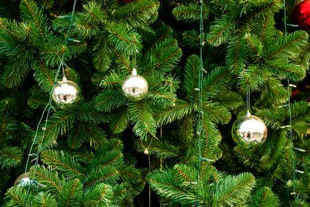 Close-Up of a Christmas Tree.