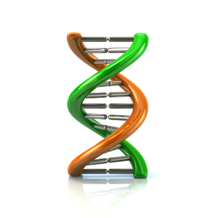 3d illustration of green an orange DNA molecule icon isolated on white background Stock Photo