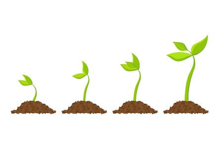 Simple sprouting seed drawing. Vector illustration Ilustração