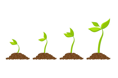 Simple sprouting seed drawing. Vector illustration Illustration