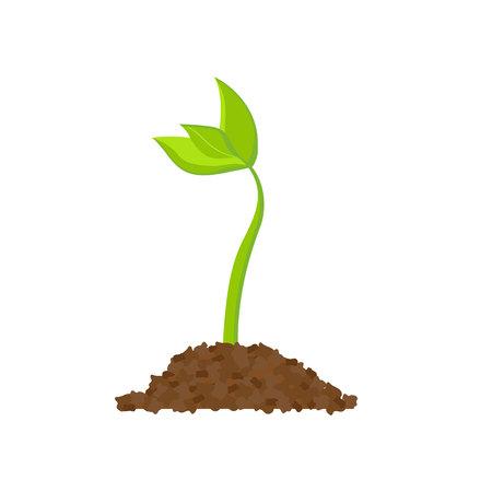 Dessin simple de graines de germination.