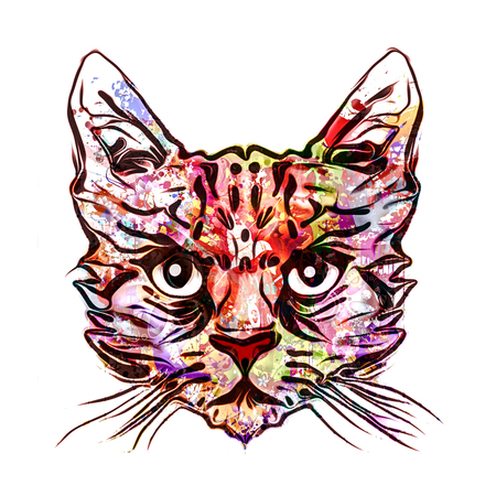 Cat head colorful illustration on white background
