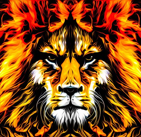 Lion head colorful illustration on white background Banque d'images