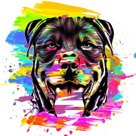 the head of dog rottweiler