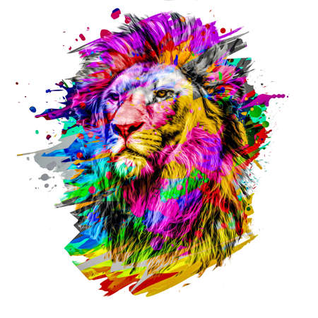 lion isolated on color background