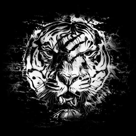 abstract  tiger face, graphic design concept
