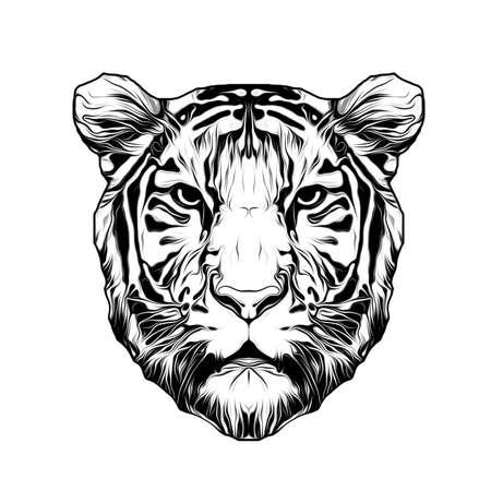 white tiger head logo art Фото со стока