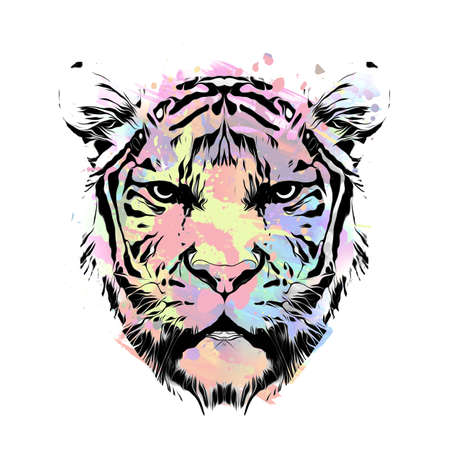 Bright colorful art of tiger head on white Фото со стока