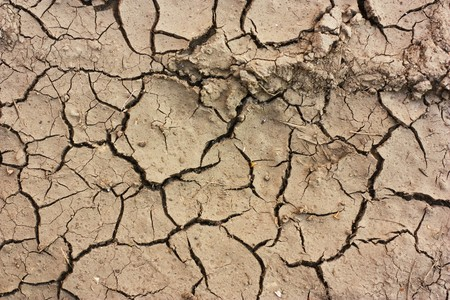 High Resolution Dry Soil Texture Stock Photo - 8199969
