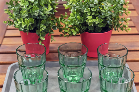 Green glass goblets on the background of plants. Utensils from green glass. 免版税图像