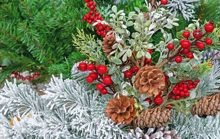 Pine cones and red berries on a Christmas tree. New Years decor. Zdjęcie Seryjne
