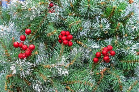 Decorative red berries on a christmas tree. Background with christmas berries. Zdjęcie Seryjne