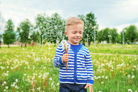 Happy smile kid standing in grass with dandelions. Dandelion seeds flying, green background. Beautiful caucasian child enjoyment. Portrait cute boy leisure in nature,outdoors.childhood. Lifestyle. Foto de archivo