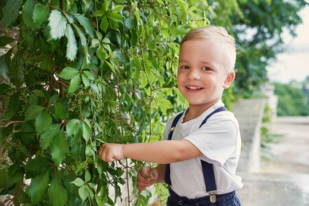 Pleased child boy stands with wall plants. Portrait blond kid outdoors. Cute face with a smile.