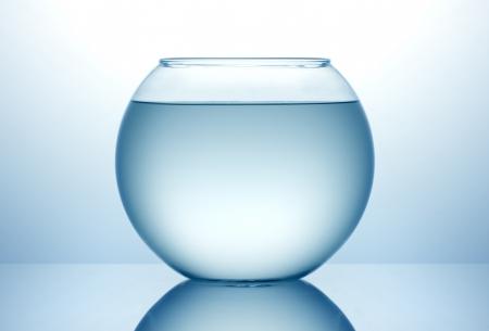 푸른 물과 물고기 그릇