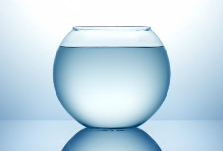 Fish bowl with blue water photo