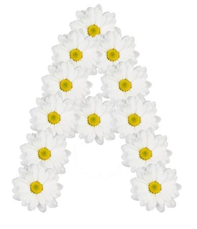 Letra A partir de flores blancas