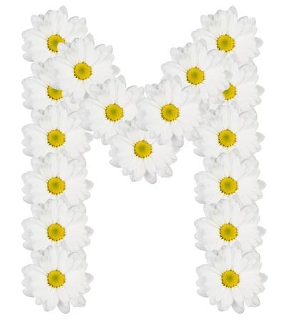 Letra M hecha de flores blancas Foto de archivo