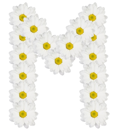 Letter M made from white flowers Stock Photo