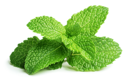 Fresh raw mint leaves isolated on white Stok Fotoğraf - 23070331
