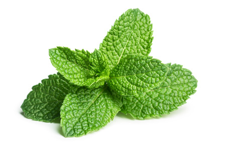menthol: Mint leaves isolated on white