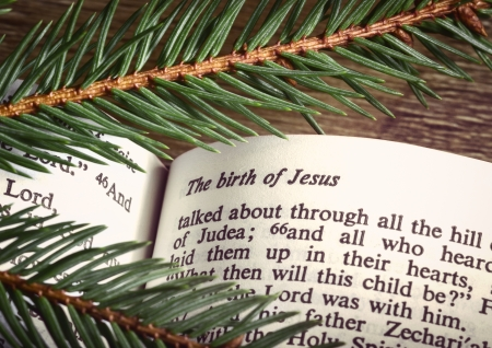 Bible open to Christmass passage with evergreen sprigs