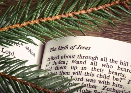 nacimiento de jesus: Biblia abierta a CHRISTMASS pasaje con ramitas de hoja perenne Foto de archivo