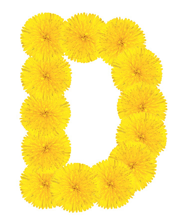 letter head: Letter D made from dandelion flowers isolated on white background
