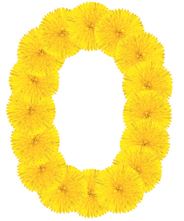 Letter O made from dandelion flowers isolated on white background