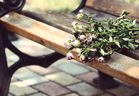 Dry bouquet on bench photo