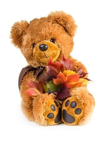 Juguete bonito oso de peluche con el ramo de hojas de oto�o aisladas sobre fondo blanco Foto de archivo