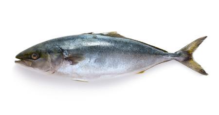Rauwe tonijn op een witte achtergrond