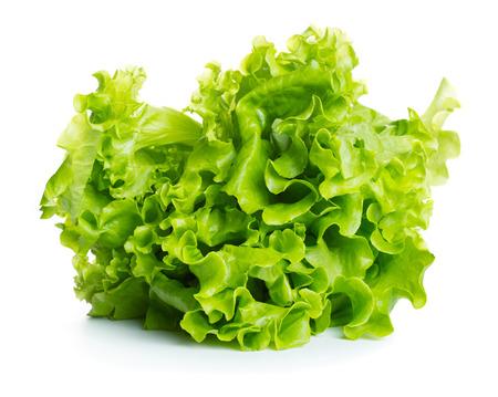 Fresh green lettuce isolated on white background