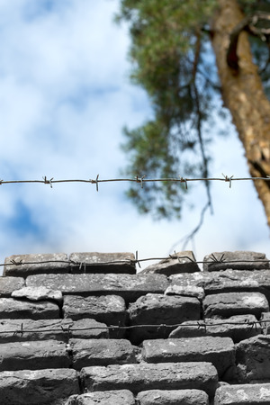 slavery: Freedom and slavery: blue sky and barbed wire Stock Photo