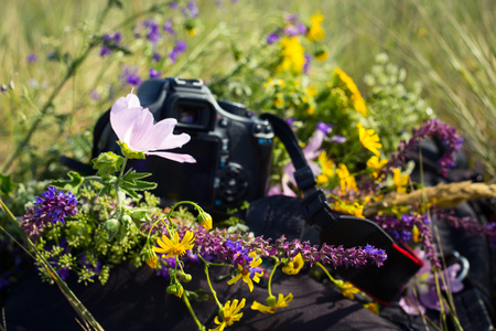 Camera and backpack on green summer field background