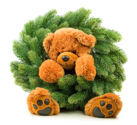 Teddy bear with Christmas wreath isolated on white background Stock Photo