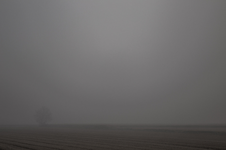 fields taken from below in the autumn with fog and poor visibility Banque d'images