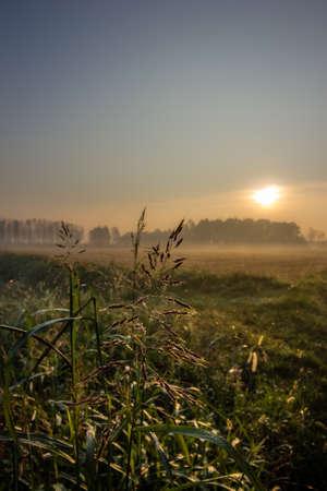 Photo of the italian countryside