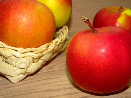 hazelnut tree: apples