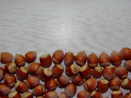 hazelnut tree: hazelnut Stock Photo