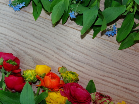 pfingstrosen: Blumen Pfingstrosen Lizenzfreie Bilder